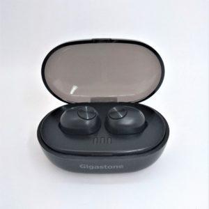 GJBH-T1<br>両耳タイプ